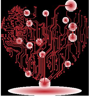 Cardiovascular Diagnostics, Remote CIED Monitoring, Cardiopulmonary Rehabilitation