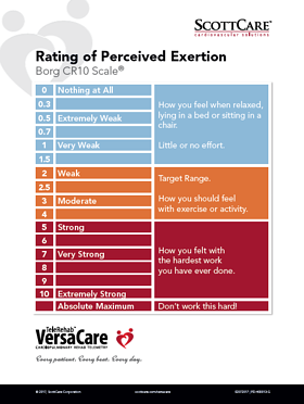 Rating of Percieved Exertion Borg CR10 Scale