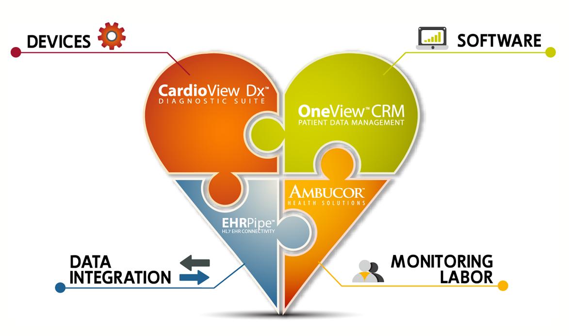 Cardiovascular Diagnostics and Monitoring